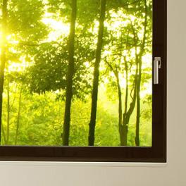 détail fenêtre Clara